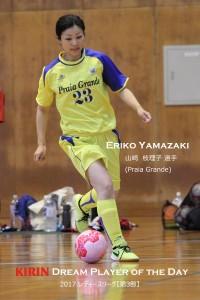 3-3_DPD_eriko yamazaki